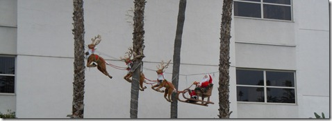 Santa hanging from palm trees