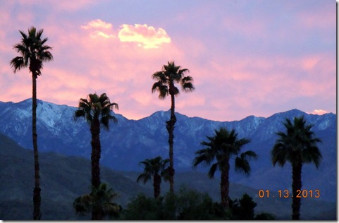 Sunset at Palm Springs Oasis