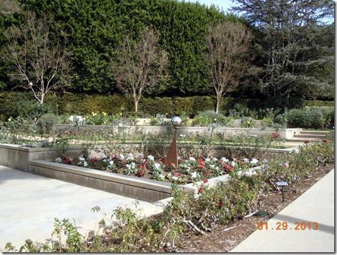 Pat Nixon Rose Garden