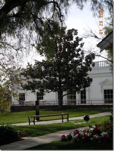 Andrew Jackson tree planted by Pat Nixon