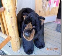 Stuffed bear @ Yukon Motel gift shop