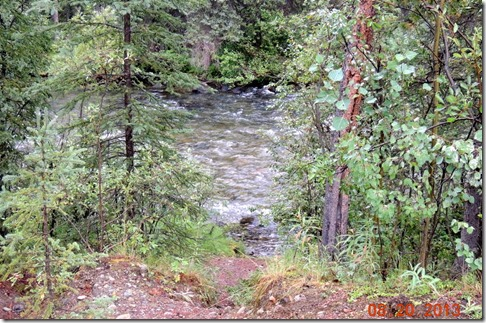 Walk to the creek in Big Creek Campground YT