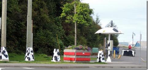 Cow Bay