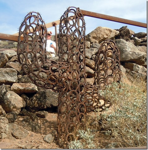 Horseshoe Cactus @Desert Bar
