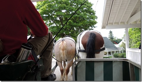 Back of the second carriage horses