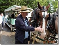 Bob petting the horse