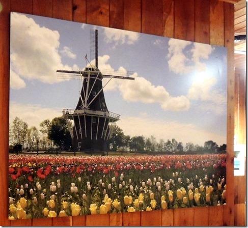 Windmill Island Gardens Holland MI