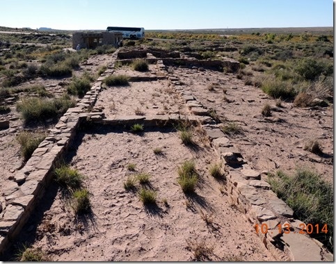 Remains Petrified Forest