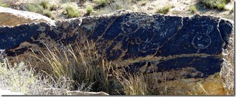 Petroglyph, Petrified Forest