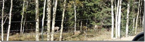 Deer Hwy 62 CO