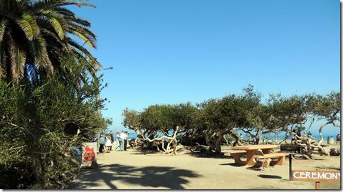 A wedding party, La Jolla beach