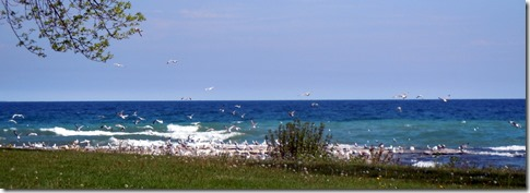 Lake Michigan from Sheboygan