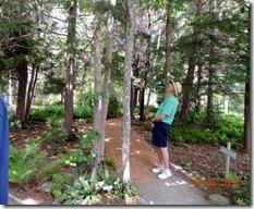 Gardens, Acadia NP Maine