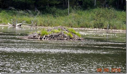 Beaver Dam, Acadia NP Maine