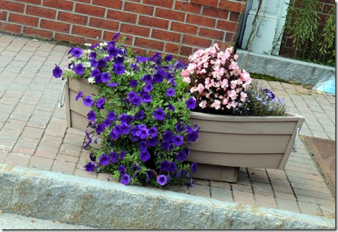 Flowers in boats, Kennebunk, ME