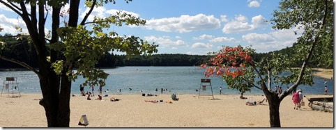 WAldon Pond. Concord MA
