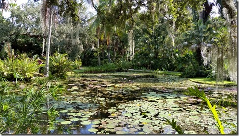 Lili Pond, McKee Botanical Gardens