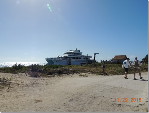 The Ferry, 115 ft long