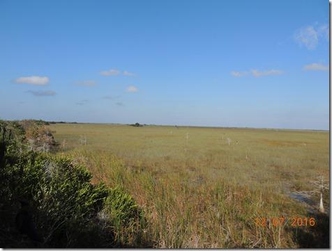South Everglades