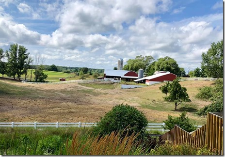 Sues pic of Moomers farm