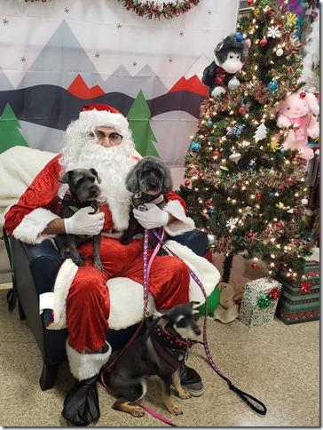 Petsmart Santa 2019