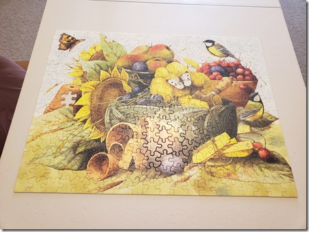 Fruit and bird puzzle